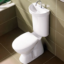 Profile Smart Flush Toilet